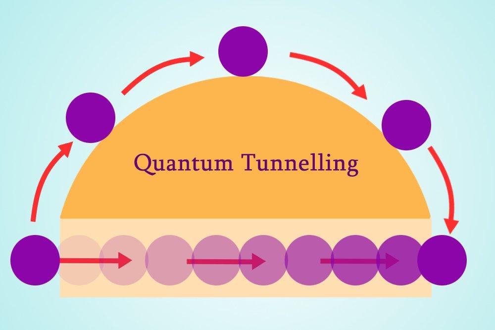 هل بالإمكان تطبيق قوانين فيزياء الكم على البيولوجيا؟