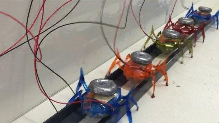 روبوتات تحاكي أرجل النمل