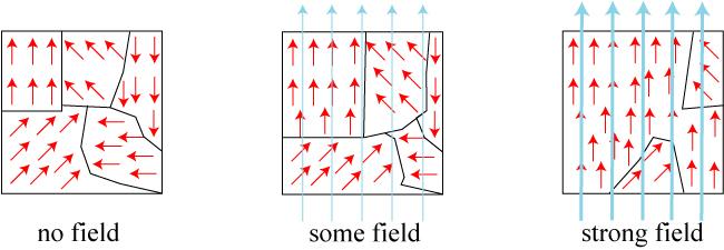 سلسلة الفيزياء والحياة: فلنوحد العزوم